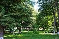 Вижницький парк.jpg