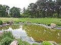 В ботанічному саду імені Миколи Гришка.jpg
