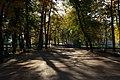 Летний сад. Центральная аллея. Осень. Фото 2008 года..JPG