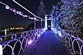 Мост ночью.jpg
