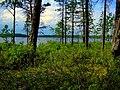 Озеро. - panoramio (2).jpg