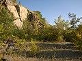 Октябрьский гранитный карьер - panoramio (30).jpg