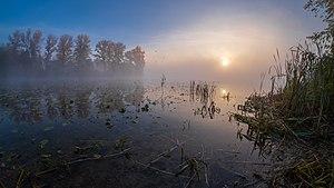 Ранкові кольори у заказнику Бобровня.jpg