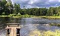 Река Шелепиха в Белохолуницком районе Кировской области.jpg