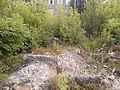 Руины мелькомбината 2.JPG