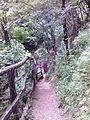 Смоларски водопад 71.jpg