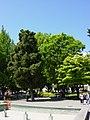 Стара Загора - panoramio (9).jpg