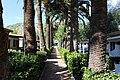 "Террачина, Кемпинг ""Ле Пальме"" (Le Palme Village) - panoramio.jpg"