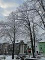 Троян - panoramio (1).jpg