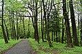 Трускавецький парк 24.jpg
