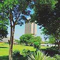 جامعة بغداد.jpg