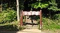 千波公園少年の森 - panoramio.jpg