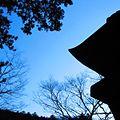 奥多摩-九頭竜神社-01 - panoramio.jpg