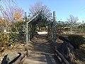 平和の森公園 バラの小径.jpg