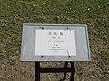 彫刻「天光散」 - panoramio (1).jpg