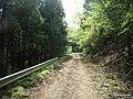 金時山林道 - panoramio (6).jpg