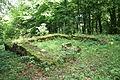 003. Fanum gallo-romain de Pupillin.jpg