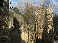 005 Monestir de Sant Cugat del Vallès, muralla est.JPG