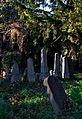 008 - Wien Zentralfriedhof 2015 (23206319746).jpg