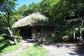 043michinoku folk village3872.jpg