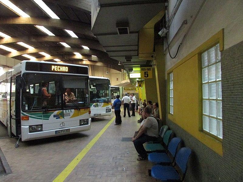 Tudo sobre transporte em Faro Portugal