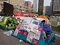 080607 ROK Protest Against US Beef Agreement 02.JPG