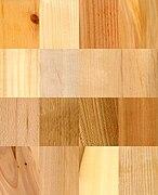 16 wood samples.jpg