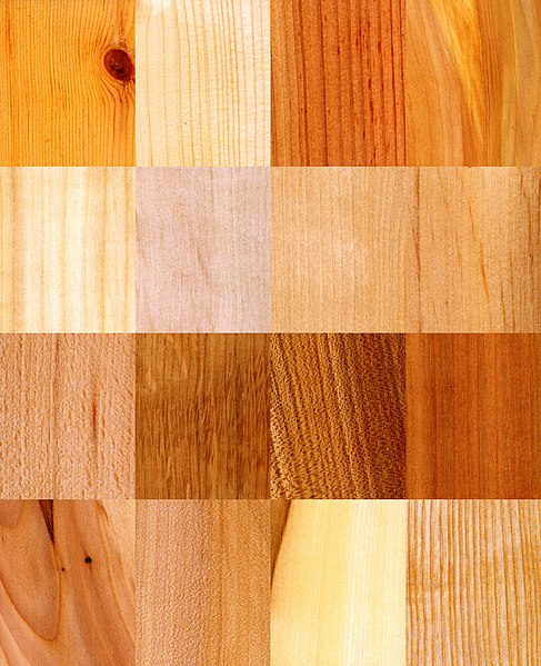 Elemento madera feng shui atributos, significado, usos colores, productos, accesorios, decoracion