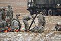 173rd Airborne Brigade training jump 150126-A-HE539-207.jpg