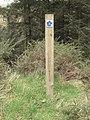 1 2 3 Waymarker in Coed Moel Famau - geograph.org.uk - 1249929.jpg
