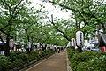 1 Chome Yukinoshita, Kamakura-shi, Kanagawa-ken 248-0005, Japan - panoramio.jpg