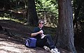 2000. Carrie Burns (WDNR) aerial observer and forest pathology technician. Aerial survey Calibration and Conformity training. (35899062312).jpg