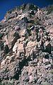 20000927-Andesite-SRB large.jpg