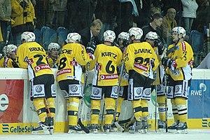 Krefeld Pinguine - Krefeld Pinguine team