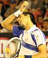 2011 Australian Open IMG 0069 2 (5444729642).jpg