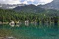2013-08-06 11-56-55 Switzerland Kanton Graubünden Poschiavo Lagh da Saoseo.JPG