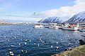 2014-04-29 11-04-49 Iceland - Siglufirði Siglufjörður.JPG