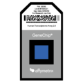 201506 Affymetrix Array Chip.png