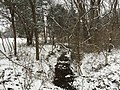 2016-02-15 08 31 55 View west down a snowy Cain Branch of Cub Run from Lees Corner Road (Virginia State Secondary Route 645) in the Armfield Farm section of Chantilly, Fairfax County, Virginia.jpg