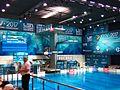 2017 European Diving Championships - 1m Springboard Women - Final 03.jpg