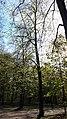 20200423 170310 Park Piłsudskiego in Łódź.jpg