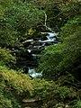 237, Taiwan, 新北市三峽區安坑里 - panoramio.jpg