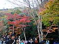 2 Minookōen, Minoo-shi, Ōsaka-fu 562-0002, Japan - panoramio (8).jpg