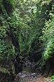 315, Taiwan, 新竹縣峨眉鄉七星村 - panoramio.jpg