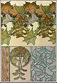 39 mucha documentsdecoratifs 1901.jpg