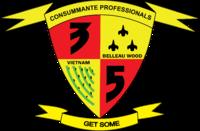 3 5 battalion insignia