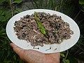 4087Ants Common houseflies foods delicacies of Bulacan 19.jpg