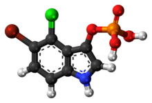 Ball-and-stick model of the BCIP molecule