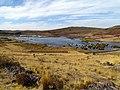 63 Lake Umayo Sillustani Peru 3458 (15143770835).jpg