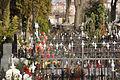 8091viki Cmentarz w Bielawie ul. Żeromskiego. Foto Barbara Maliszewska.jpg